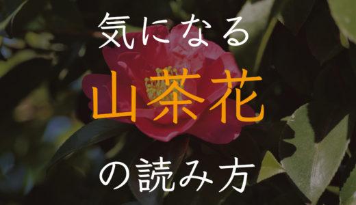 サザンカ、なぜ漢字は「山茶花」(サンサカ)なのか?